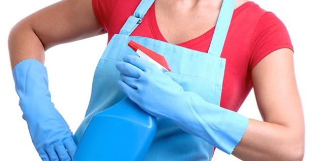 servicio domestico y limpieza del hogar en donostia san sebastian